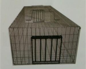 L'ENTREPRISE DE DERATISATION DU 59/62 VOUS DONNE UN AUTRE EXEMPLE DE CAPTURE  DES RATS : LA NASSE